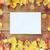 ősz · lap · keret · papír · absztrakt · természet - stock fotó © dolgachov