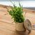 Spice · таблице · деревянный · стол · древесины · синий - Сток-фото © dolgachov