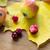 set · diverso · frutti · di · bosco · isolato · bianco · frutta - foto d'archivio © dolgachov