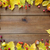 frame · frutti · frutti · di · bosco · legno · natura - foto d'archivio © dolgachov