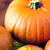 close up of pumpkins on wooden table at home stock photo © dolgachov