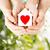 女性 · 男 · 手 · 赤 · 中心 · 愛 - ストックフォト © dolgachov