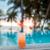 tropicales · mar · puesta · de · sol · palmas · hermosa · paisaje - foto stock © dolgachov