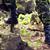 asker · tırmanma · kayalar · orman · savaş - stok fotoğraf © dolgachov