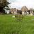 old grave cross on celtic cemetery in ireland stock photo © dolgachov
