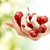female hand full of red cherries stock photo © dolgachov