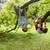 młodych · chłopców · gry · parku · dzieci · dziecko - zdjęcia stock © dolgachov