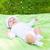 blijde · baby · jongen · lachend · exemplaar · ruimte - stockfoto © dolgachov