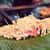 champignons · cuisson · bord · prêt · cuit · sauvage - photo stock © dolgachov