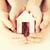 kopen · verkopen · optie · klein · huis · model - stockfoto © dolgachov