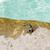 zee · krab · strand · oceaan · zand · leven - stockfoto © dolgachov