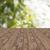 ogrodzenia · zielone · roślin · wiosną · trawy - zdjęcia stock © dolgachov
