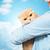 gato · mantener · manos · mano - foto stock © dolgachov