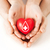 hands holding red heart with donor sign stock photo © dolgachov