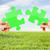 azul · grama · verde · quebra-cabeça · céu · grama · folha - foto stock © dolgachov