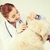 gelukkig · arts · hond · dierenarts · kliniek · geneeskunde - stockfoto © dolgachov