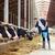 adam · inekler · saman · mandıra · çiftlik - stok fotoğraf © dolgachov