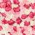 végtelen · minta · rózsák · virágok · absztrakt · rózsaszín · izolált - stock fotó © dolgachov