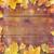 frame · veel · verschillend · natuur · seizoen - stockfoto © dolgachov