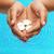 kezek · közelkép · mutat · valami · nő · női - stock fotó © dolgachov