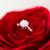提案 · エンゲージメント · 若い男 · 婚約指輪 · ガールフレンド - ストックフォト © dolgachov