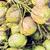monte · jovem · Tailândia · textura · fruto - foto stock © dolgachov