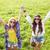 sorridente · jovem · hippie · amigos · verde · campo - foto stock © dolgachov