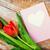 два · розовый · цветы · Розовые · розы · изолированный - Сток-фото © dolgachov