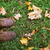 feet in boots and autumn leaves on grass stock photo © dolgachov