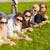 grupo · estudiantes · adolescentes · colgante · fuera · verano - foto stock © dolgachov