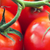 juteuse · rouge · tomates · régime · alimentaire - photo stock © dolgachov