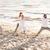 people making yoga in warrior pose on beach stock photo © dolgachov