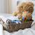 baby · kleding · speelgoed · pasgeboren · moederschap - stockfoto © dolgachov