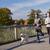 heureux · couple · chien · courir · extérieur · fitness - photo stock © dolgachov