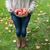 woman with apples at autumn garden stock photo © dolgachov