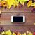smartphone · vruchten · bessen · seizoen · advertentie - stockfoto © dolgachov