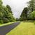 asfalto · carretera · ruta · cielo · árbol - foto stock © dolgachov