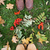 feet in boots with rowanberries and autumn leaves stock photo © dolgachov