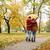 modo · autunno · parco · colore · foresta · natura - foto d'archivio © dolgachov