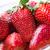 close up of ripe red strawberries over white stock photo © dolgachov