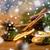 Рождества · ель · филиала · корицей · сушат · оранжевый - Сток-фото © dolgachov