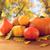 sonbahar · ahşap · masa · kutu · üst · görmek - stok fotoğraf © dolgachov