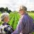 boldog · idős · pár · ölel · nyár · kert · gazdálkodás - stock fotó © dolgachov