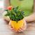 mani · piccolo · fiore · giardino - foto d'archivio © dolgachov