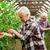 старший · женщину · растущий · помидоров · фермы · теплица - Сток-фото © dolgachov