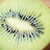 friss · kiwi · szelet · közelkép · zöld · gyümölcs - stock fotó © dolgachov
