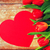 close up of red tulips and paper heart shape card stock photo © dolgachov