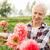 senior woman with flowers at summer garden stock photo © dolgachov