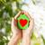 kırmızı · kalp · eller · resim · büyük · kadın - stok fotoğraf © dolgachov