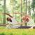 vrouw · fitness · bos · afbeelding · gezondheid · achtergrond - stockfoto © dolgachov